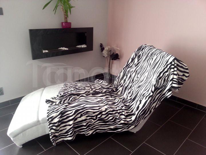 Deka mikro - zebra černobílá
