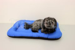 Omyvatelná podložka - velikost L - modrá Pelíšky pro psy - Pelechy - Lehká podložka - Velikost L - 50x70