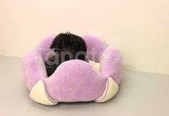 Lotos velký fialový Pelíšky pro psy - Pelechy - Lehká podložka - Lotos velký cca 60cm