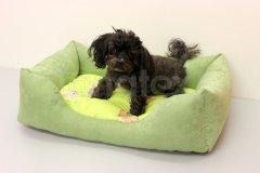 Obdelníček malý - broušený polyester Zelený - zelení pejsci Pelíšky pro psy - Pelechy - Obdelníček