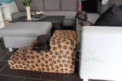 Schody pro psa Hnědé stopy - MAXI Pelíšky pro psy - Schody pro psy